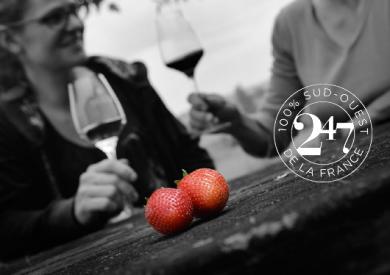 fraises-duras-2