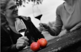 hauts-de-riquets-fraise